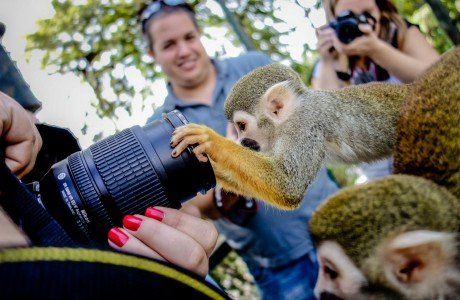 טיפים לקניית מצלמה